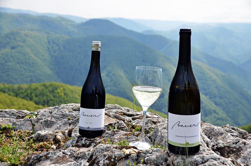 https://www.karpaten-offroad.de/wp-content/uploads/2018/05/food-wine-image-06.jpg