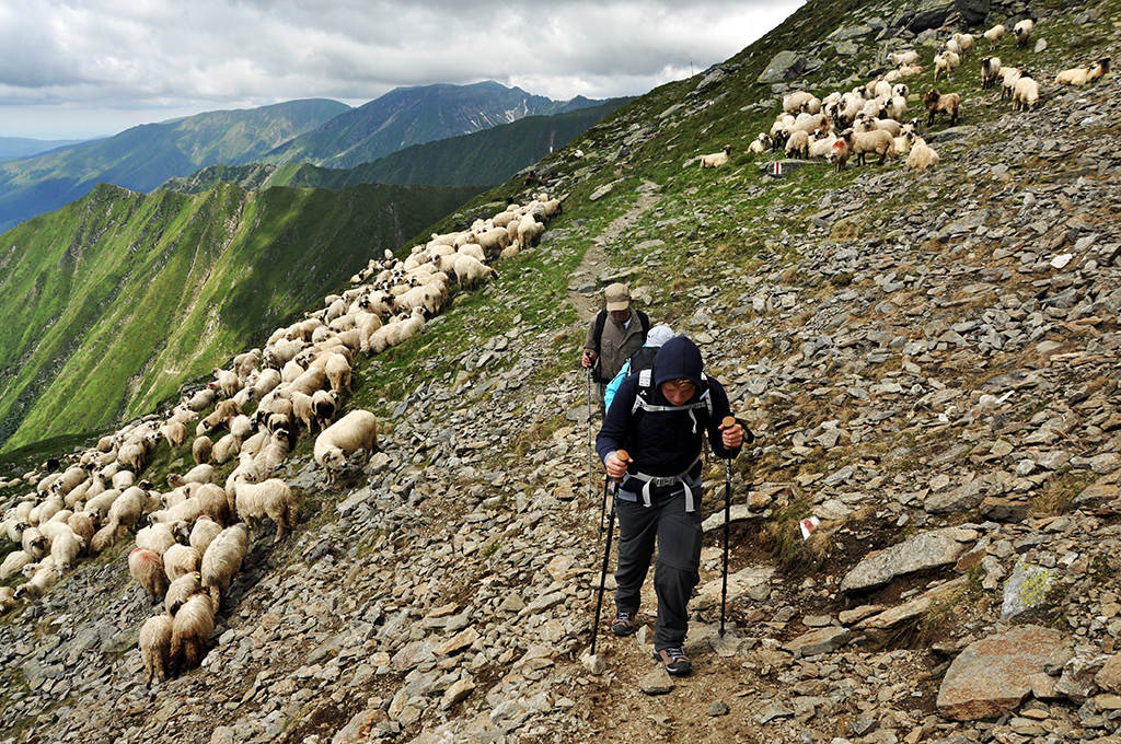 https://www.karpaten-offroad.de/wp-content/uploads/2018/05/trekking-image-18.jpg